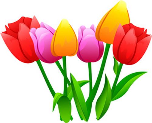 Flower5723jpg1_2